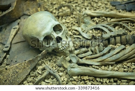 Human skeleton in an open grave with the skull and bones laid out in anatomical order in a catacomb or burial site - stock photo