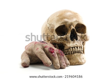 human skull and hand - stock photo