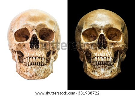 Human skull in front aspect isolated on black and white background - stock photo