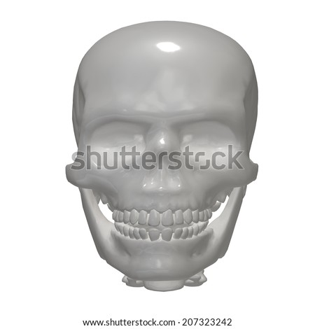 Human skull isolated against a white background