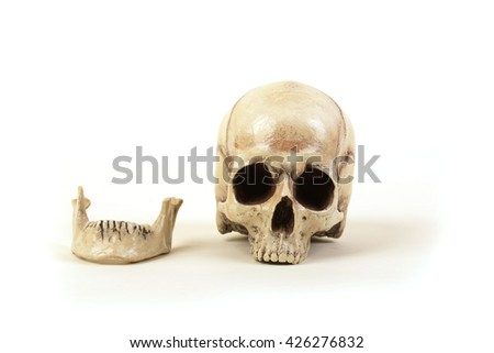 Human skull on a white background without the lower jaw. Separate lower jaw with teeth. - stock photo