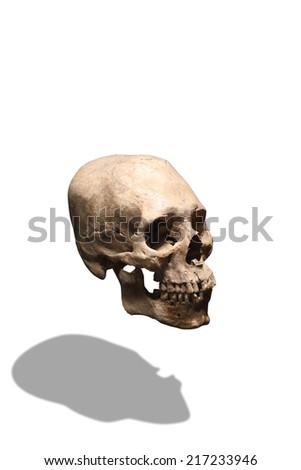 Human skull over white background - stock photo
