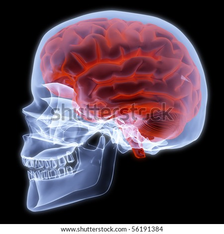 human skull under X-rays, 3d render - stock photo