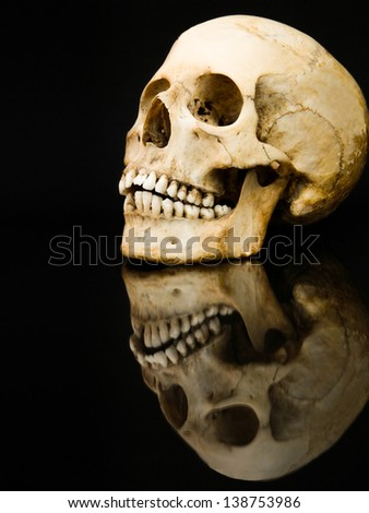 Human skull with mirror image isolated on black - stock photo