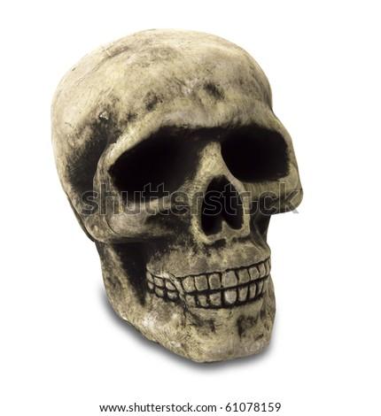 Human Skull with Path - stock photo