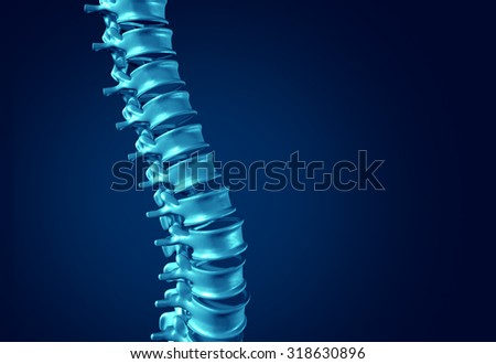Human Spine concept as medical health care anatomy symbol with the skeletal spinal bone structure closeup on a dark blue background as blank copy space. - stock photo