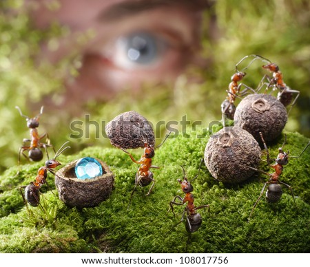 human spying after ants hide treasure, ant tales - stock photo