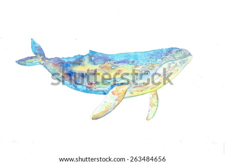 Humpback whale illustration - stock photo