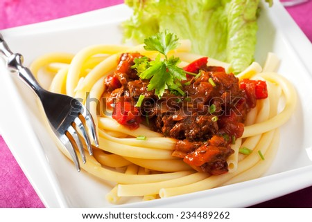 hungarian goulash with macaroni pasta  - stock photo