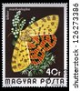"""HUNGARY - CIRCA 1974: A stamp printed in Hungary a shows Purple Tiger Moth, with the same inscriptions, from the series """"Butterflies and Moths"""", circa 1974 - stock photo"""