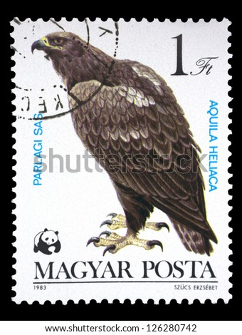 """HUNGARY - CIRCA 1983: A stamp printed in Hungary shows Eastern Imperial Eagle (Aquila heliaca), with the same inscription, from the series """"Bird of prey"""", circa 1983 - stock photo"""