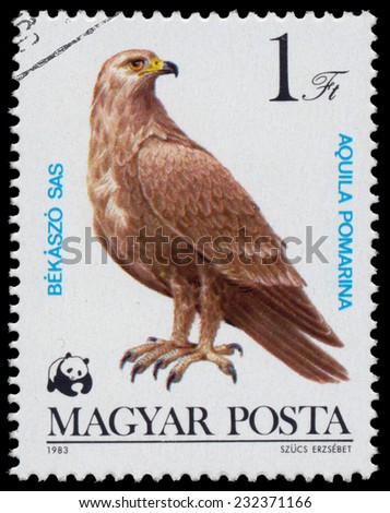 """HUNGARY - CIRCA 1983: A stamp printed in Hungary shows Lesser Spotted Eagle (Aquila pomarina), from the series """"Bird of prey"""", circa 1983  - stock photo"""