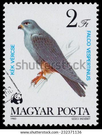 """HUNGARY - CIRCA 1983: A stamp printed in Hungary shows red-footed falcon (Falco Vespertinus), from the series """"Bird of prey"""", circa 1983  - stock photo"""