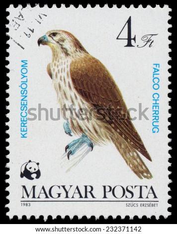 "HUNGARY - CIRCA 1983: A stamp printed in Hungary shows saker falcon (Falco cherrug), from the series ""Bird of prey"", circa 1983  - stock photo"