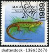 """HUNGARY - CIRCA 1989: A stamp printed in Hungary shows Sand Lizard (Lacerta agilis), with the same inscriptions, from the series """"Endangered Reptiles"""", circa 1989. - stock photo"""