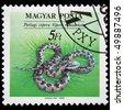 HUNGARY - CIRCA 1989: A stamp printed in  Hungary shows Viper of Nikolskiy - Vipera nikolskii, circa 1989 - stock photo