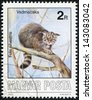 HUNGARY - CIRCA 1986: A stamp printed in Hungary shows Wildcat - Felis silvestris, circa 1986 - stock photo
