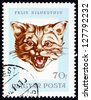 HUNGARY - CIRCA 1966: a stamp printed in the Hungary shows Head of Wildcat, felis silvestris, Hunting Trophy, circa 1966 - stock photo