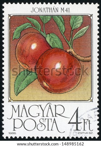 HUNGARY - CIRCA 1986: post stamp printed in Hungary (Magyar) shows apples (Jonathan M 41) from fruits series, Scott catalog 3010 A813 4fo red green yellow brown, circa 1986 - stock photo