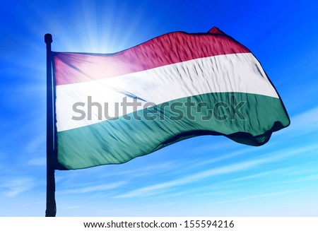 Hungary flag waving on the wind - stock photo