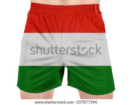 Hungary. Hungarian flag  - stock photo