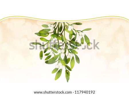 Hunging Mistletoe with soft lighting and white band - stock photo