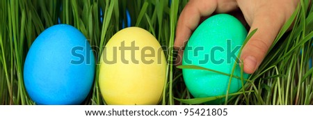 hunt for easter eggs