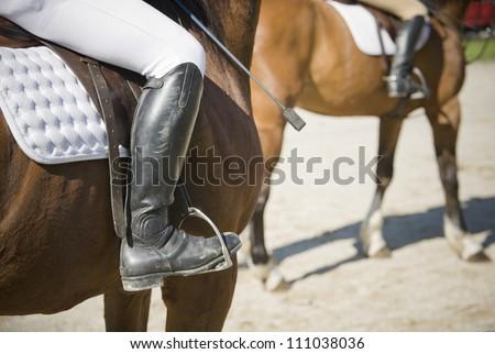 Hunt seat riding - stock photo