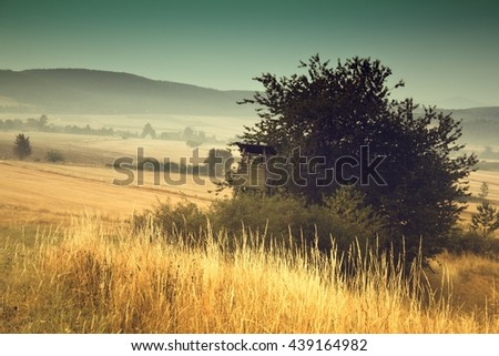 Hunt tower near the forest at summer sunrise - stock photo