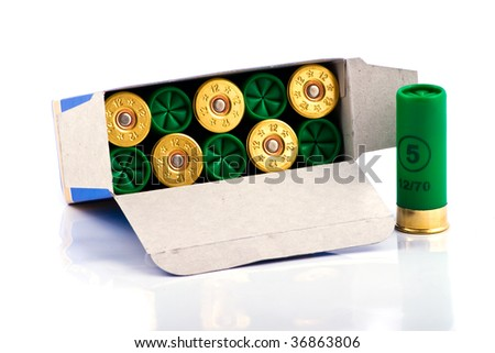 Hunting cartridges for shotgun in a box - stock photo