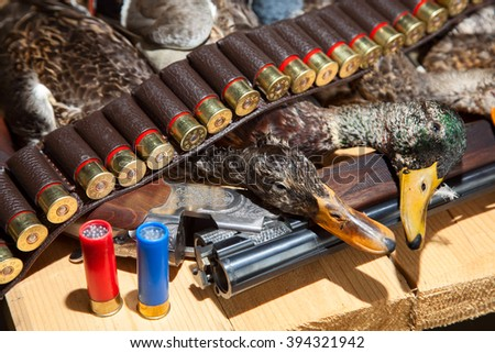 Hunting shotgun shells and a duck on the wood background - stock photo