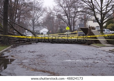 hurricane damage - stock photo