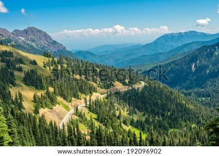 Hurricane ridge in Olympic National Park, Washington state