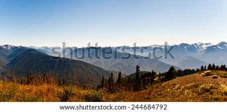 Hurricane Ridge in the Olympic Peninsula - stock photo