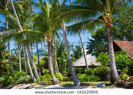 Hut with a thatched roof in tropical jungle - stock photo