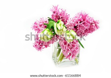 Hyacinth and tulips in vase - stock photo