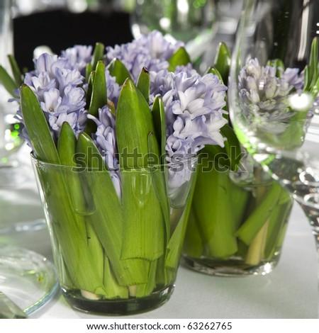 hyacinth Floral Arrangement in Vase - stock photo