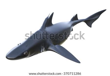 Hybodus prehistoric shark. - stock photo
