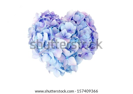 Purple heart Stock Photos, Purple heart Stock Photography, Purple