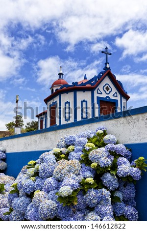 Hydrangea flowers in front of the chapel on top of Monte Santo at Agua de Pau, Sao Miguel island, Azores - stock photo
