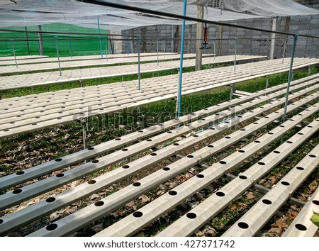 Hydroponics farm for growing plants in preparing phase before new crop - stock photo