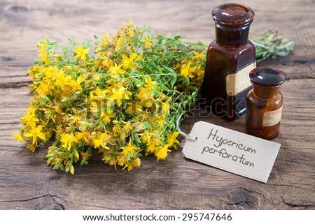 Hypericum perforatum and medicine bottles on wooden background - stock photo