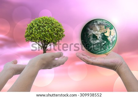 I love the natural world.Green Energy. Green for the idea that elements of this image furnished by NASA. - stock photo