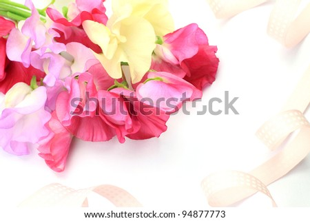 I took a sweet pea and ribbon in a white background.