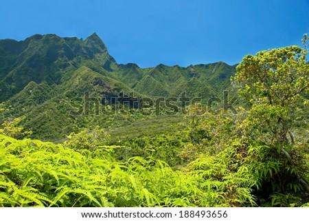 Iao Valley State Park on Maui Hawaii - stock photo