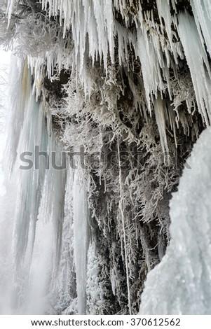 ice beauty - stock photo