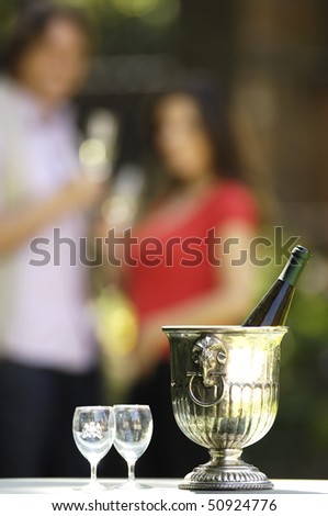 ice bucket - stock photo