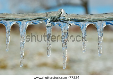 Ice Covered Barb Wire Fence - stock photo