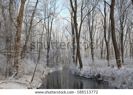 Ice-covered forest at a Bavarian river in autumn - stock photo