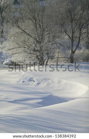 Ice covered trees on a cold Vermont morning, Stowe, Vermont, USA - stock photo